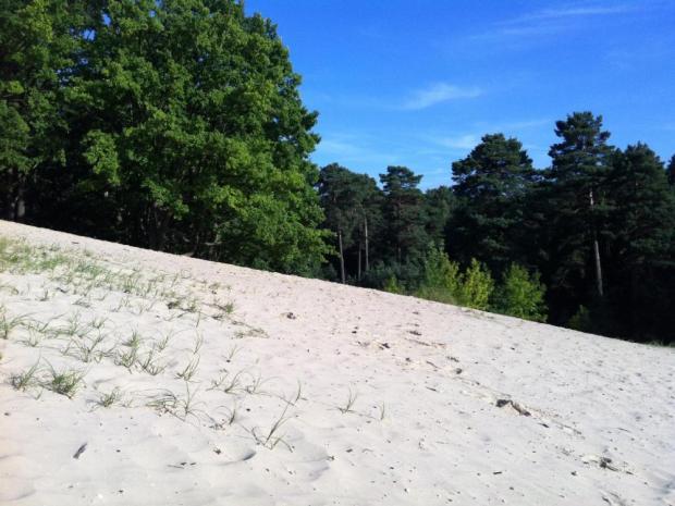 Weiße Dünen Brandenburg