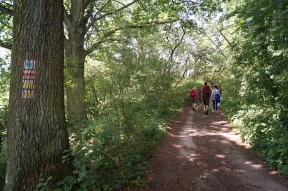 Wandern Biesenthaler Becken