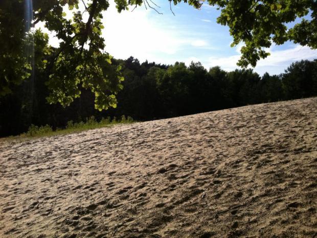 Baumberger Dünen Ausflug Bahn