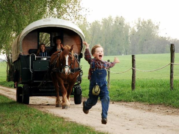 © Celine Native Caravan Planwagen Fahren in der Uckermark