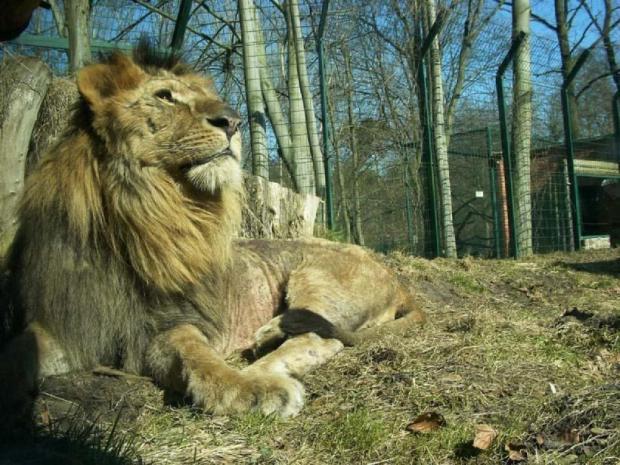 Zoo Eberswalde Ausflug Brandenburg