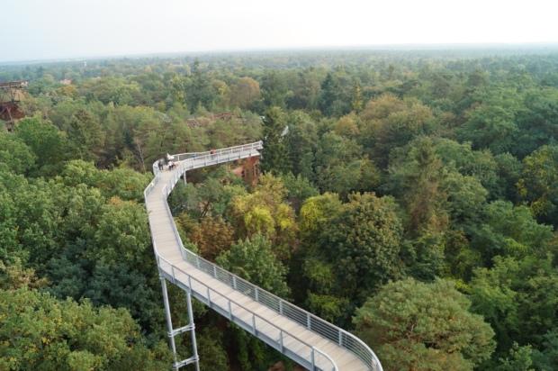 Baumkronenpfad Aussichtsturm Beelitz