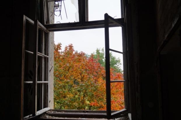 Herbst Beelitz Heilstätten