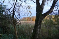Herbst Barnim Natur