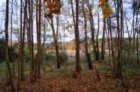 Naturpark Barnim Herbst