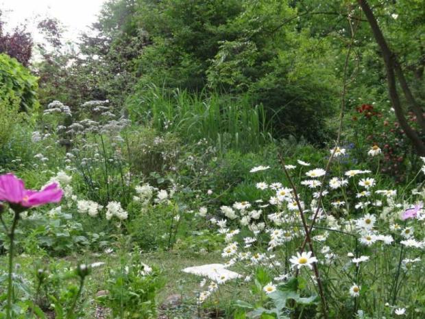 Essbarer Garten Kladow