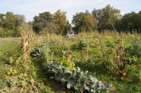 Bauerngarten Havelmathen